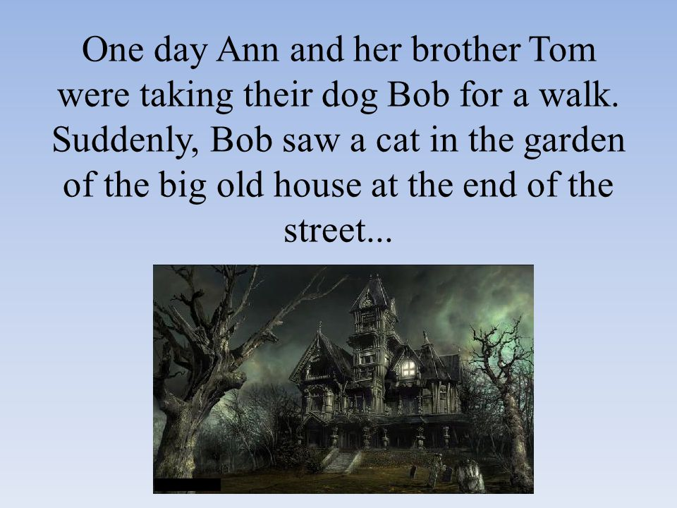 One day Ann and her brother Tom were taking their dog Bob for a walk.