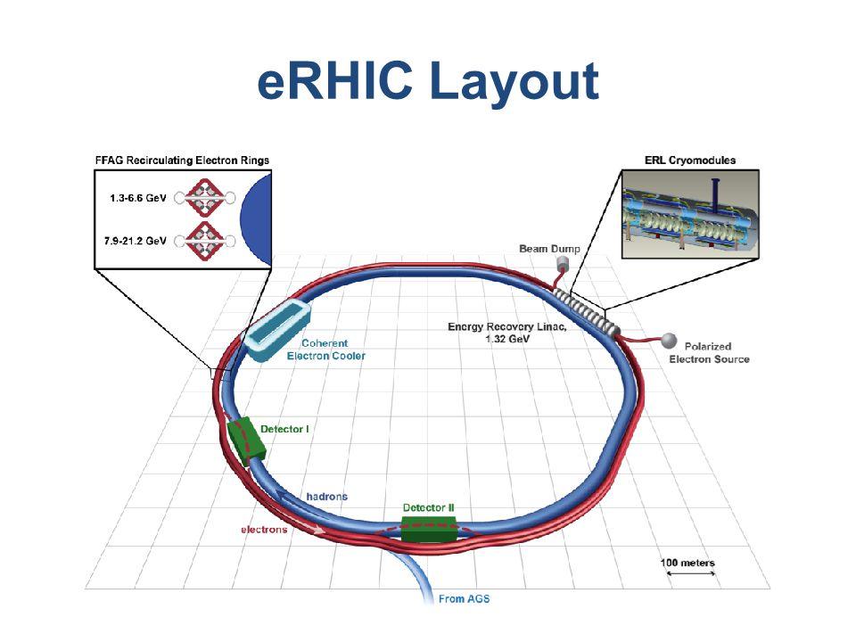 eRHIC Layout