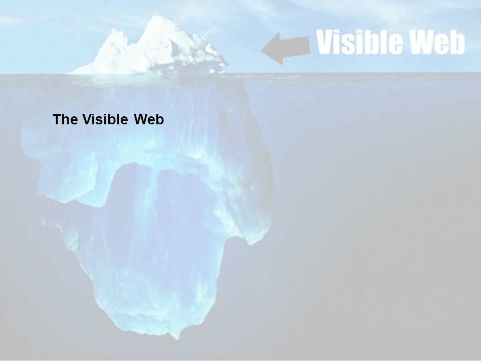 The Visible Web