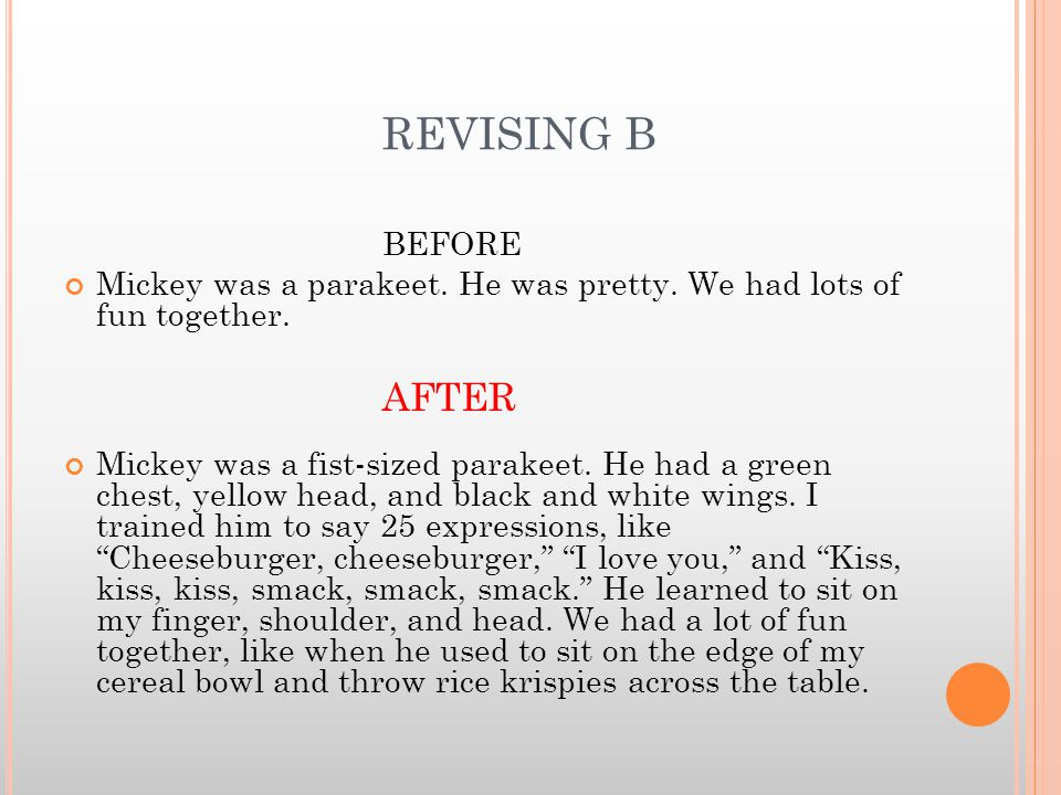 REVISING B BEFORE Mickey was a parakeet. He was pretty.