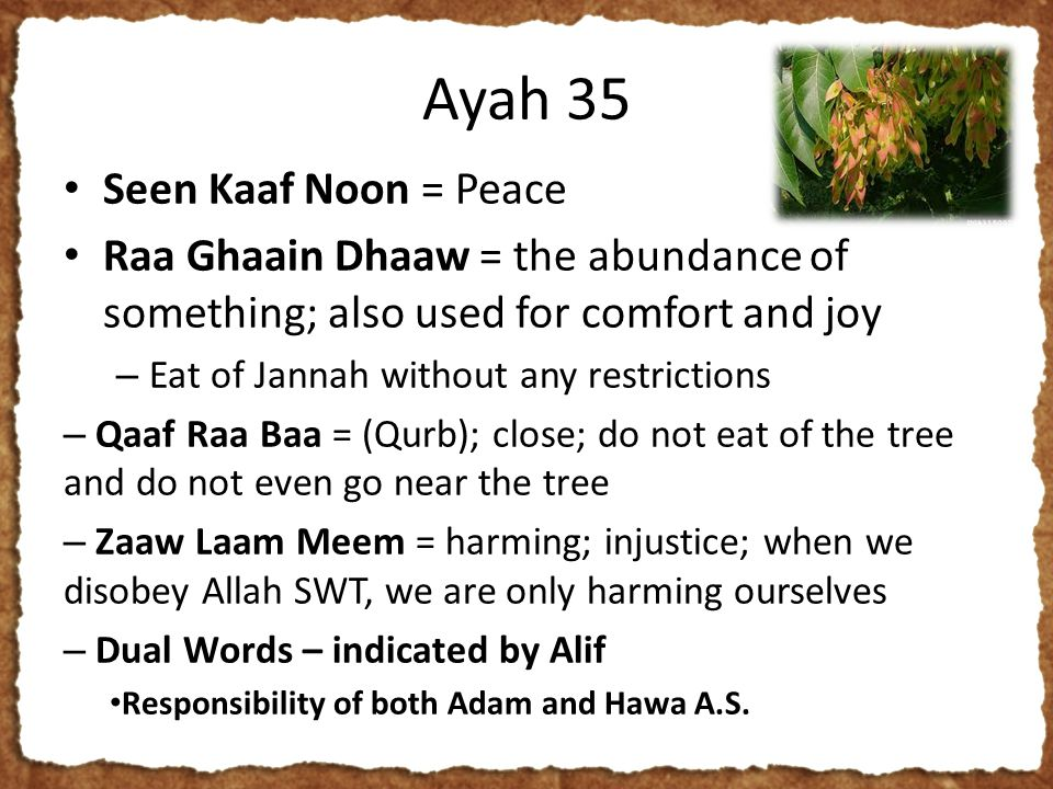 Ayah 35 Seen Kaaf Noon = Peace Raa Ghaain Dhaaw = the abundance of something; also used for comfort and joy – Eat of Jannah without any restrictions – Qaaf Raa Baa = (Qurb); close; do not eat of the tree and do not even go near the tree – Zaaw Laam Meem = harming; injustice; when we disobey Allah SWT, we are only harming ourselves – Dual Words – indicated by Alif Responsibility of both Adam and Hawa A.S.