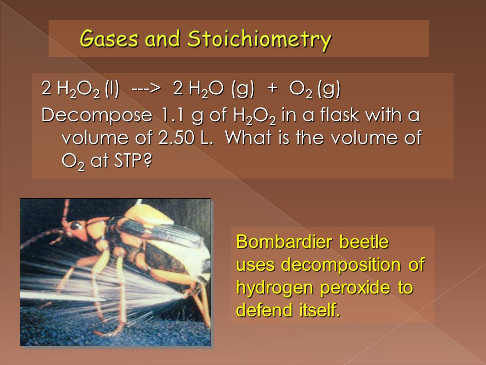 2 H 2 O 2 (l) ---> 2 H 2 O (g) + O 2 (g) Decompose 1.1 g of H 2 O 2 in a flask with a volume of 2.50 L. What is the volume of O 2 at STP? Bombardier b