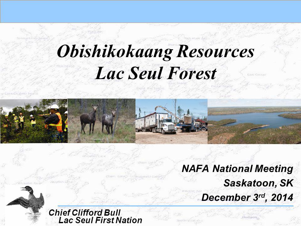 Obishikokaang Resources Lac Seul Forest NAFA National Meeting Saskatoon, SK December 3 rd, 2014 Lac Seul First Nation Chief Clifford Bull