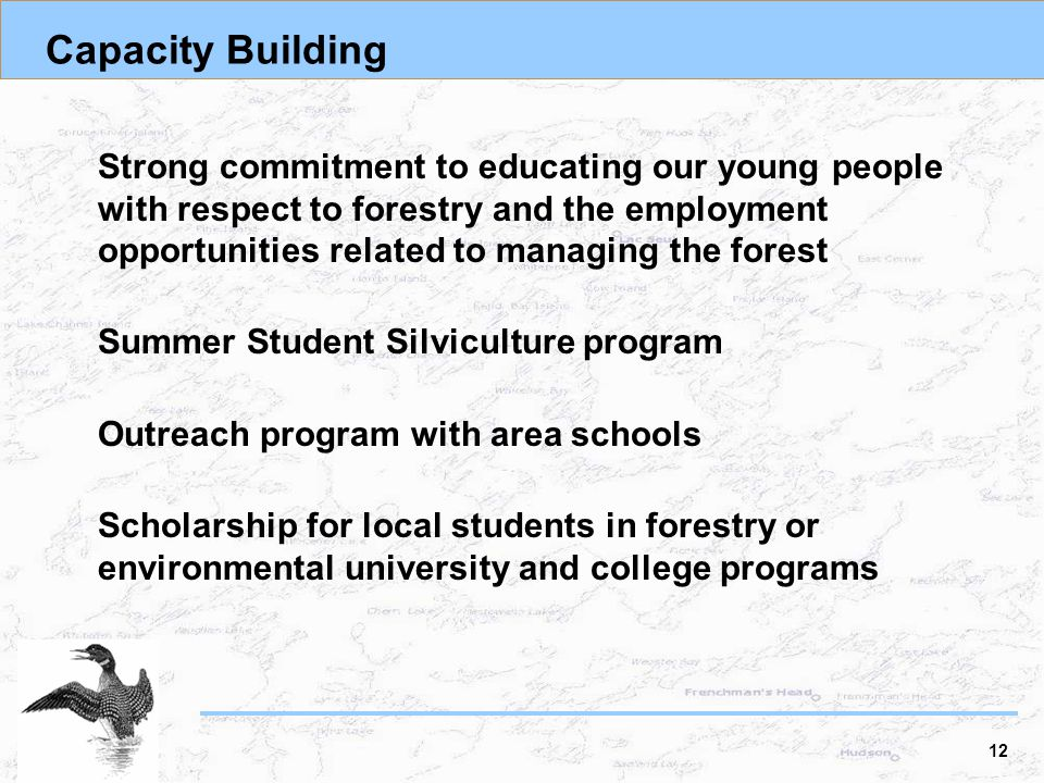 Capacity Building Strong commitment to educating our young people with respect to forestry and the employment opportunities related to managing the forest Summer Student Silviculture program Outreach program with area schools Scholarship for local students in forestry or environmental university and college programs 12