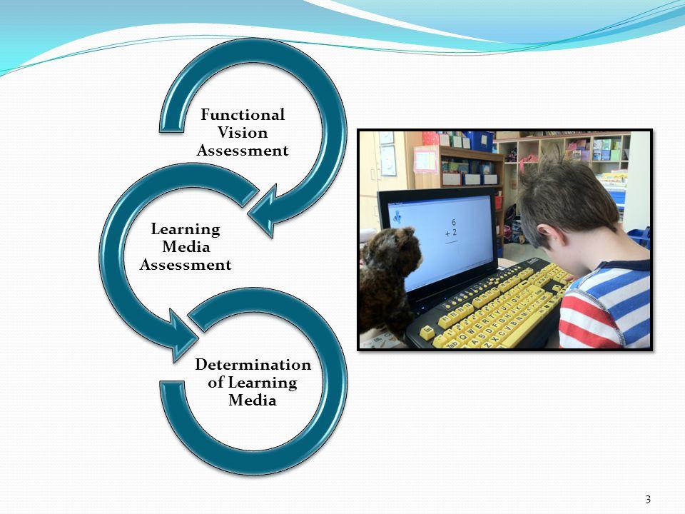 Functional Vision Assessment Learning Media Assessment Determination of Learning Media 3
