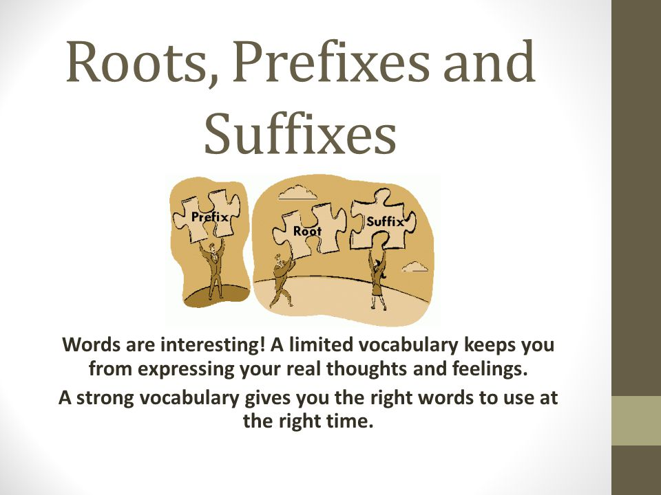 Roots, Prefixes and Suffixes Words are interesting.