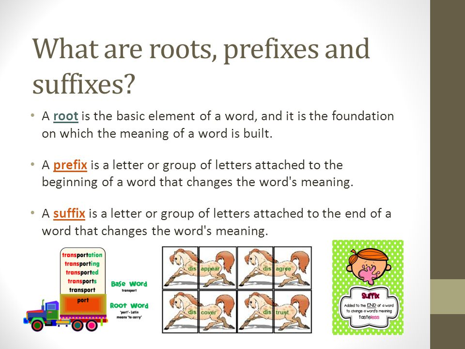 What are roots, prefixes and suffixes.