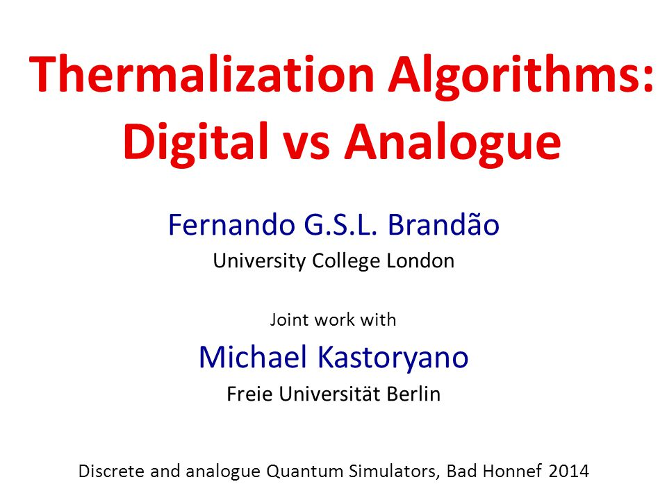 Thermalization Algorithms: Digital vs Analogue Fernando G.S.L.