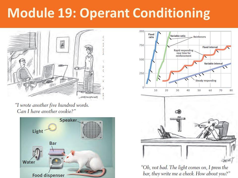 Module 19: Operant Conditioning