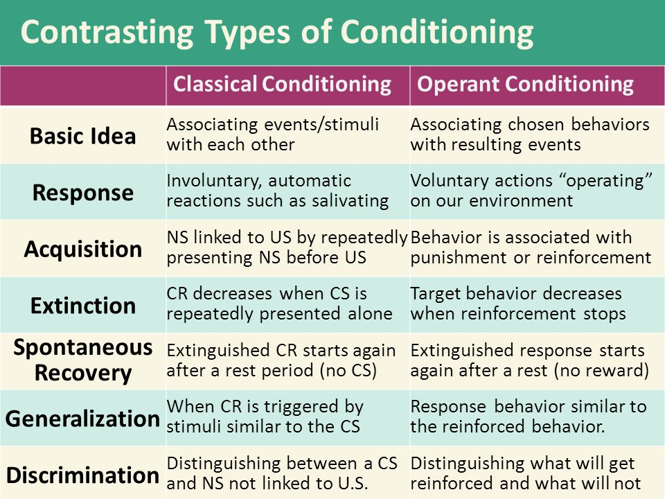 Contrasting Types of Conditioning Organism associates events.