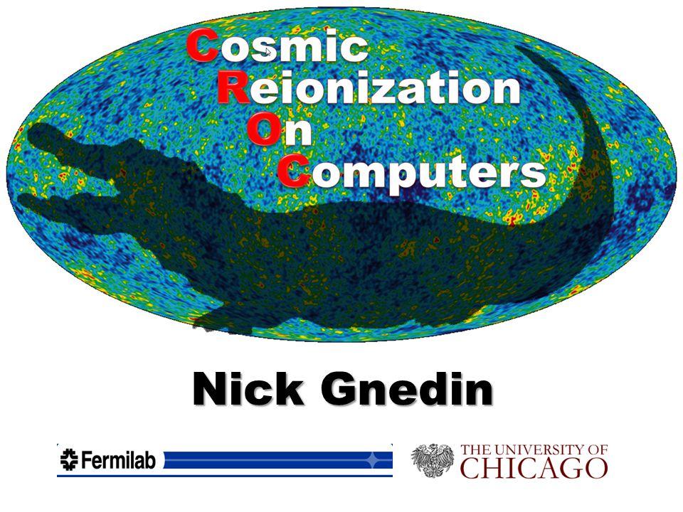 Nick Gnedin
