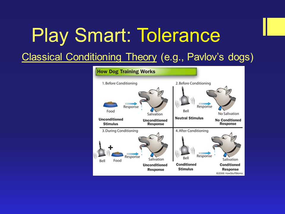 Play Smart: Tolerance Classical Conditioning Theory (e.g., Pavlov's dogs)