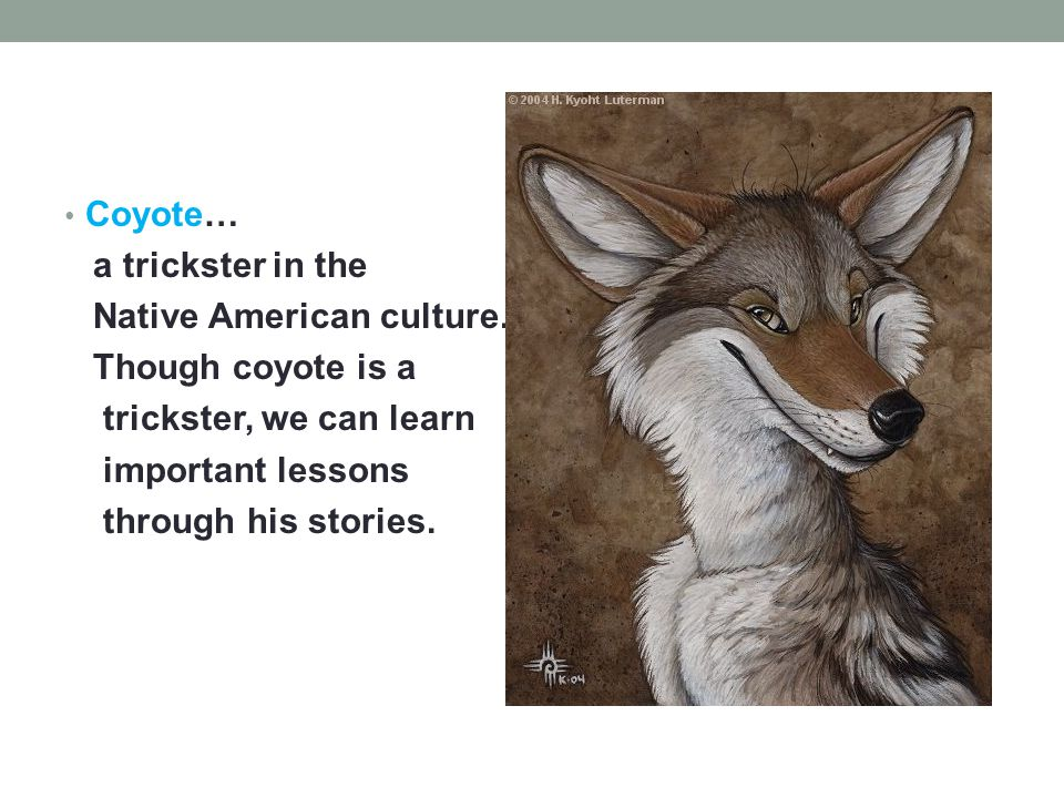 Coyote… a trickster in the Native American culture. Though coyote is a trickster, we can learn important lessons through his stories.