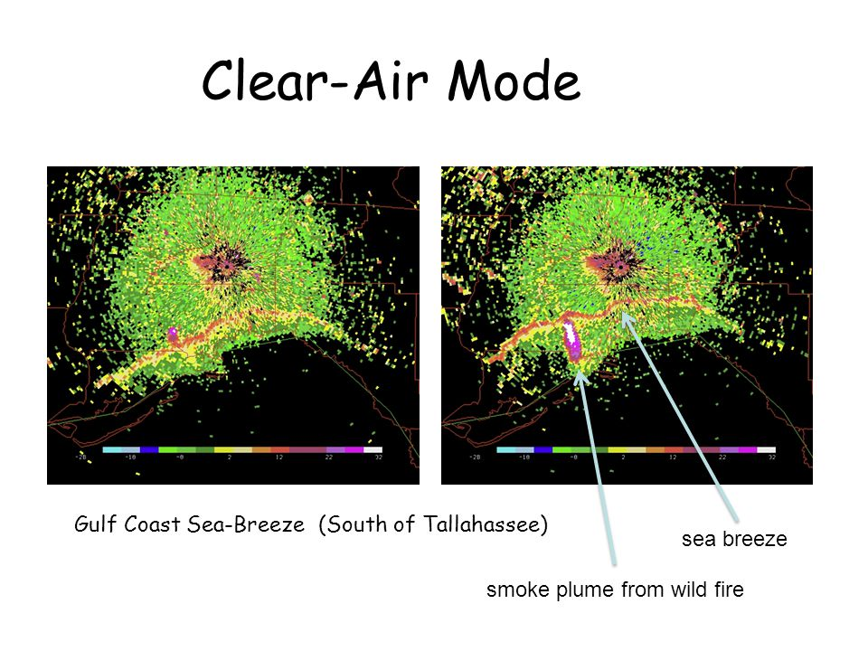 Clear-Air Mode Gulf Coast Sea-Breeze (South of Tallahassee) sea breeze smoke plume from wild fire