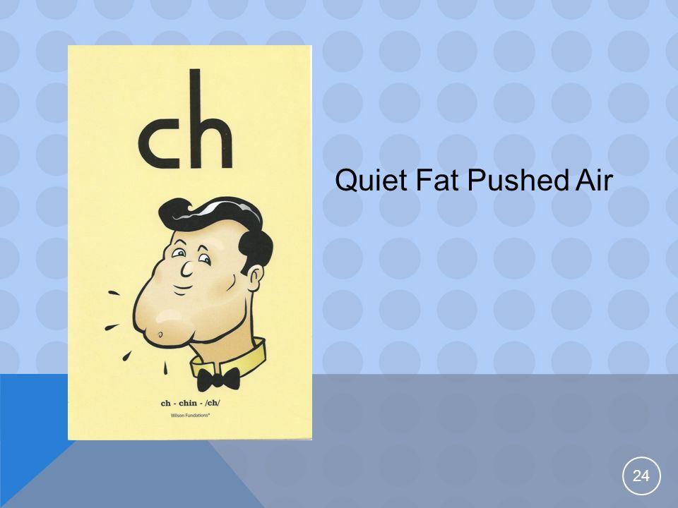 24 Quiet Fat Pushed Air