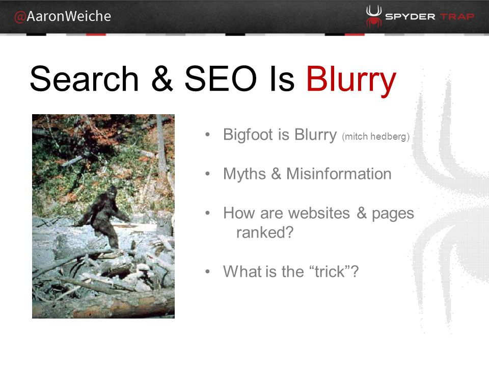 Search & SEO Is Blurry Bigfoot is Blurry (mitch hedberg) Myths & Misinformation How are websites & pages ranked.