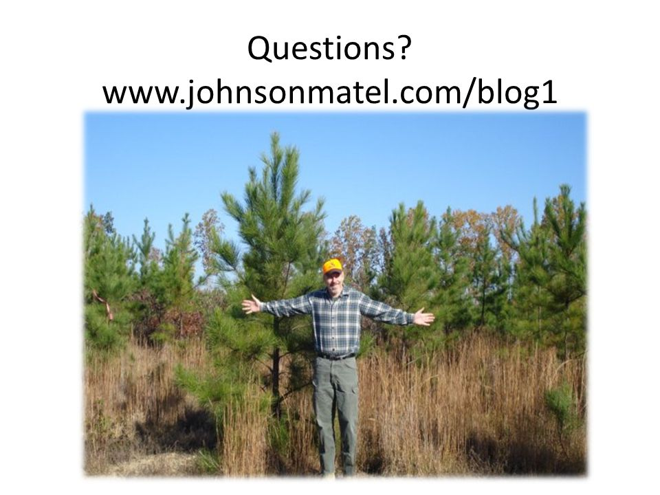Questions www.johnsonmatel.com/blog1