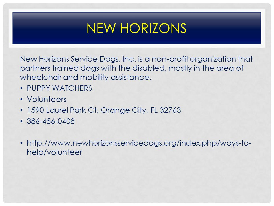 NEW HORIZONS New Horizons Service Dogs, Inc.