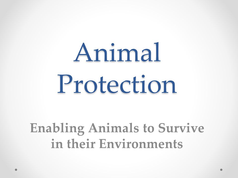 Animal Protection Enabling Animals to Survive in their Environments