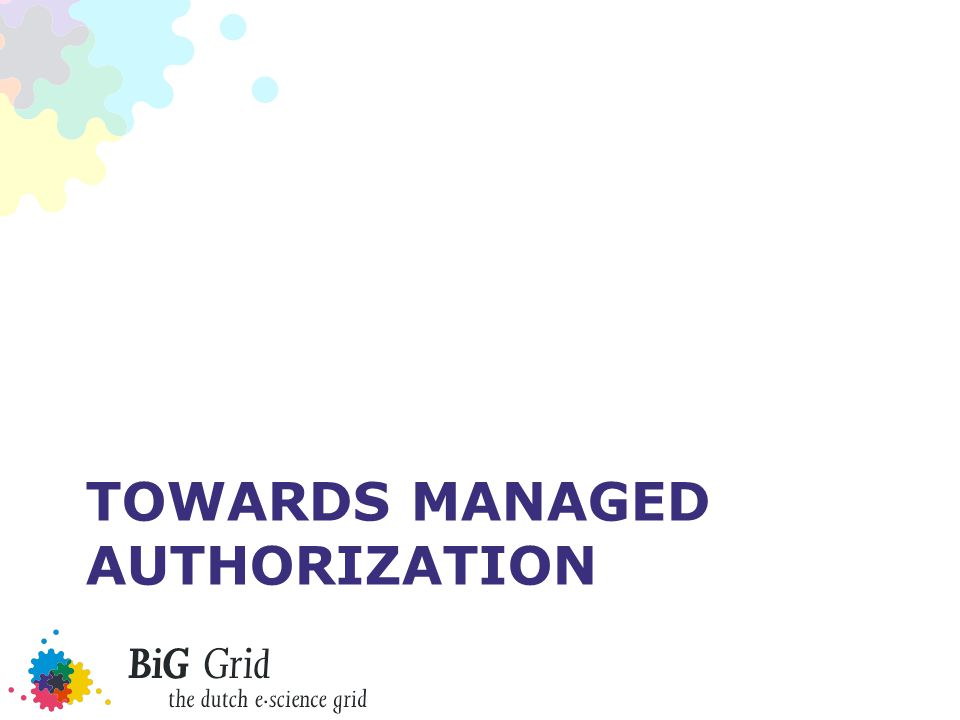 TOWARDS MANAGED AUTHORIZATION