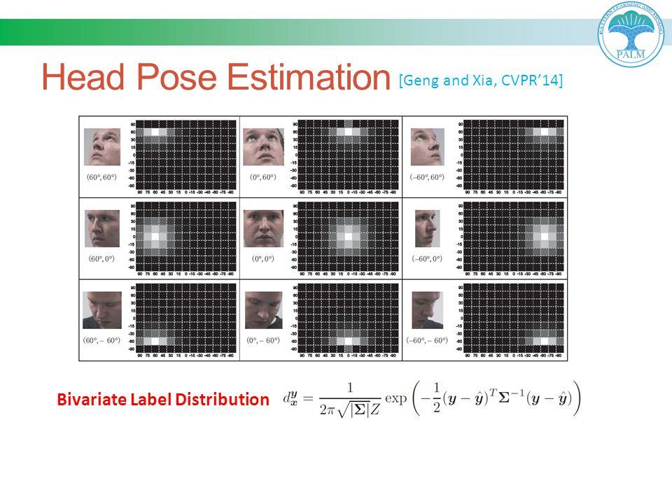 Head Pose Estimation [Geng and Xia, CVPR'14] Bivariate Label Distribution
