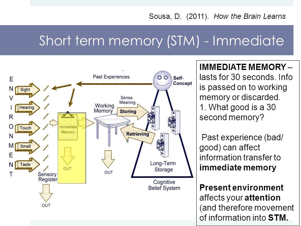 Short term memory (STM) - Immediate Sousa, D. (2011).