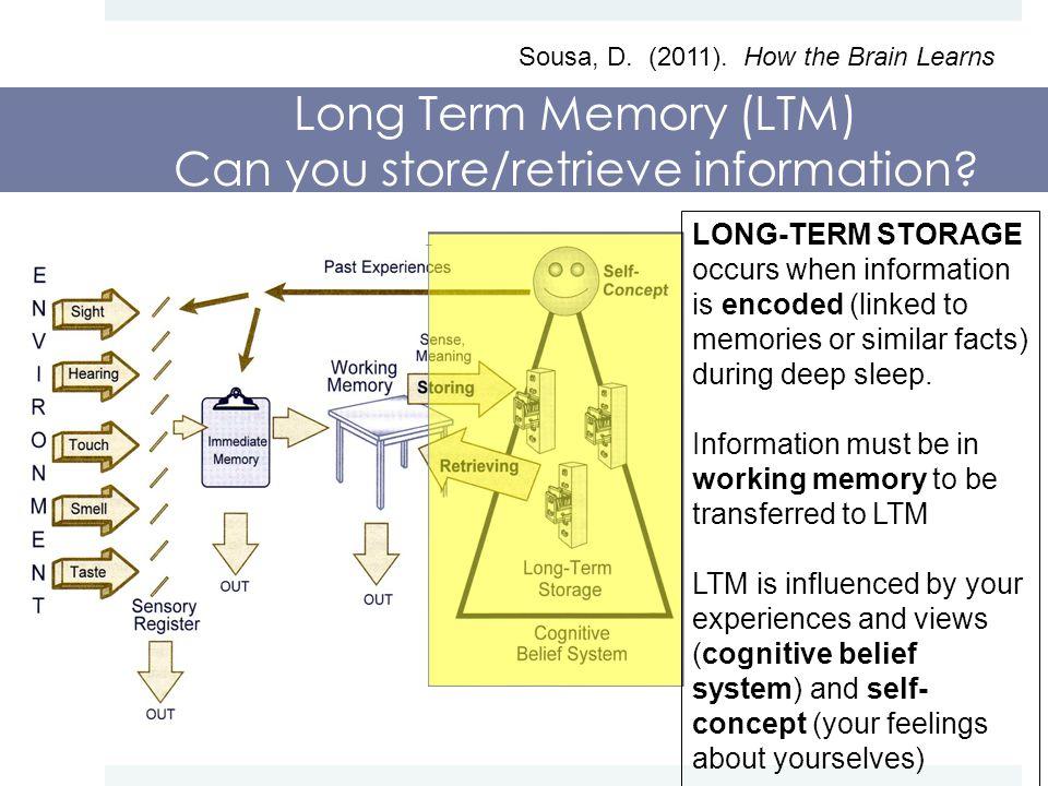 Long Term Memory (LTM) Can you store/retrieve information.
