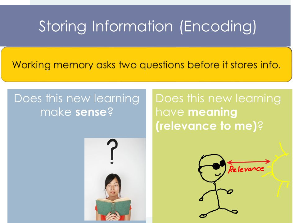 Storing Information (Encoding) Does this new learning make sense .