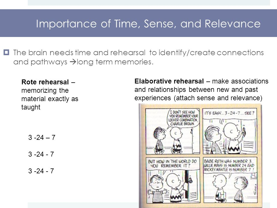 Importance of Time, Sense, and Relevance  The brain needs time and rehearsal to identify/create connections and pathways  long term memories.