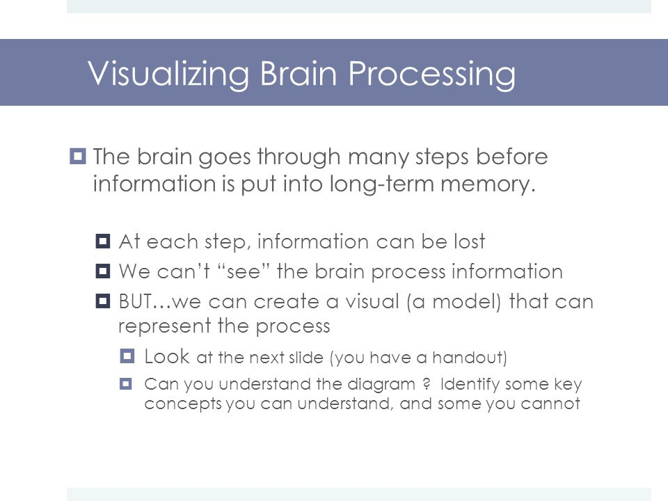 Visualizing Brain Processing  The brain goes through many steps before information is put into long-term memory.