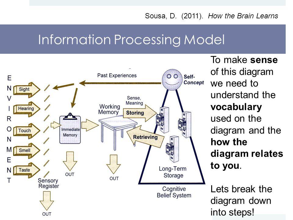 Information Processing Model Sousa, D. (2011).