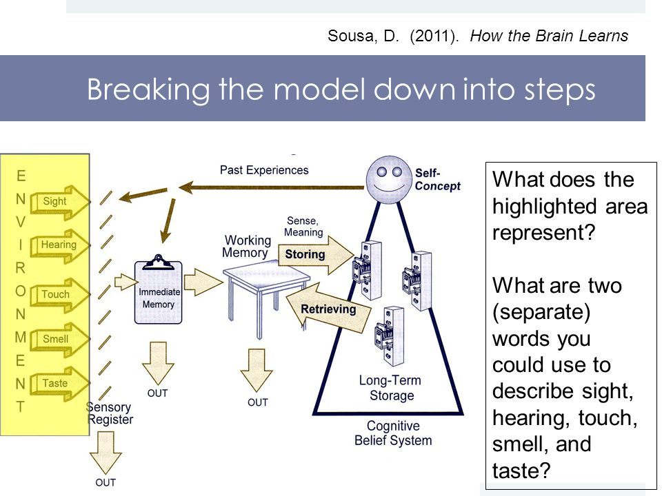 Breaking the model down into steps Sousa, D. (2011).