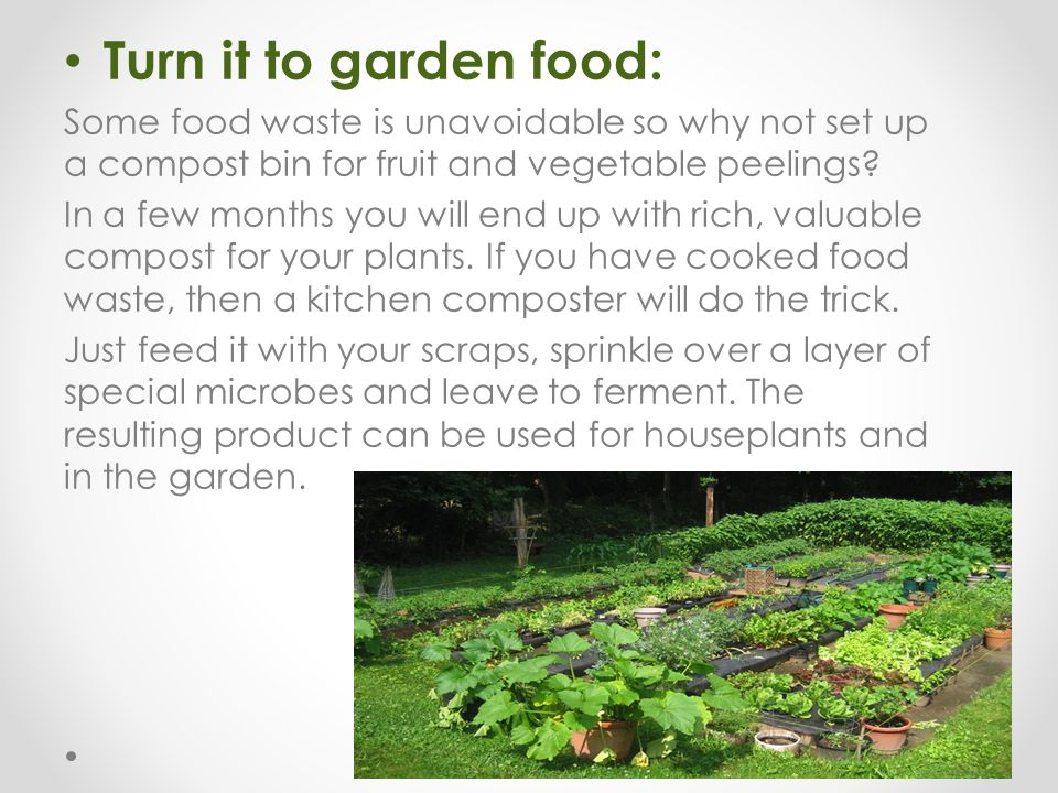 Turn it to garden food: Some food waste is unavoidable so why not set up a compost bin for fruit and vegetable peelings? In a few months you will end