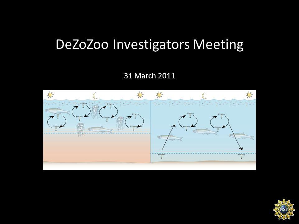DeZoZoo Investigators Meeting 31 March 2011