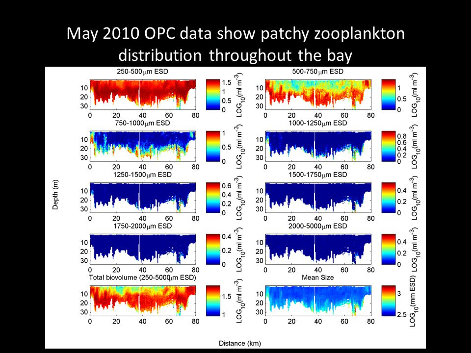 May 2010 OPC data show patchy zooplankton distribution throughout the bay