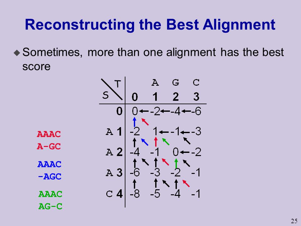 25 Reconstructing the Best Alignment u Sometimes, more than one alignment has the best score S T AAAC A-GC AAAC -AGC AAAC AG-C