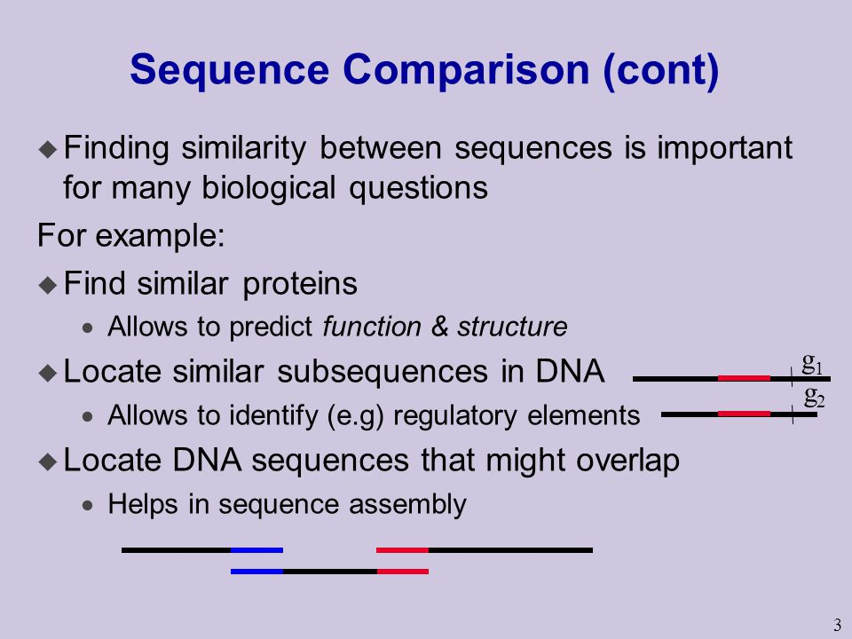 3 Sequence Comparison (cont) u Finding similarity between sequences is important for many biological questions For example: u Find similar proteins  Allows to predict function & structure u Locate similar subsequences in DNA  Allows to identify (e.g) regulatory elements u Locate DNA sequences that might overlap  Helps in sequence assembly g1g1 g2g2