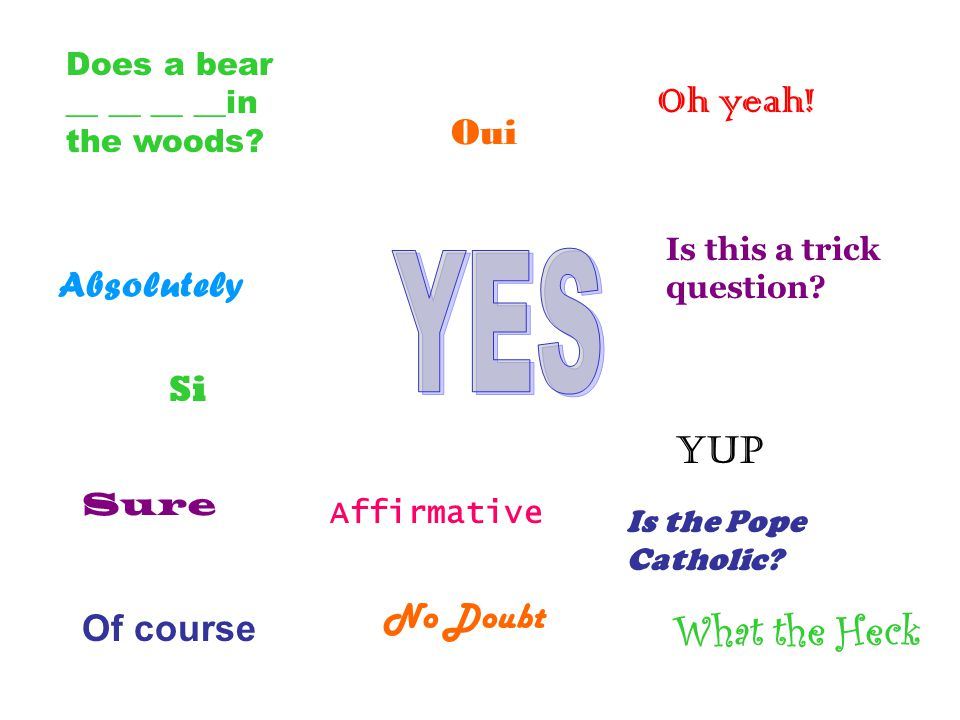 Affirmative What the Heck Does a bear __ __ __ __in the woods.