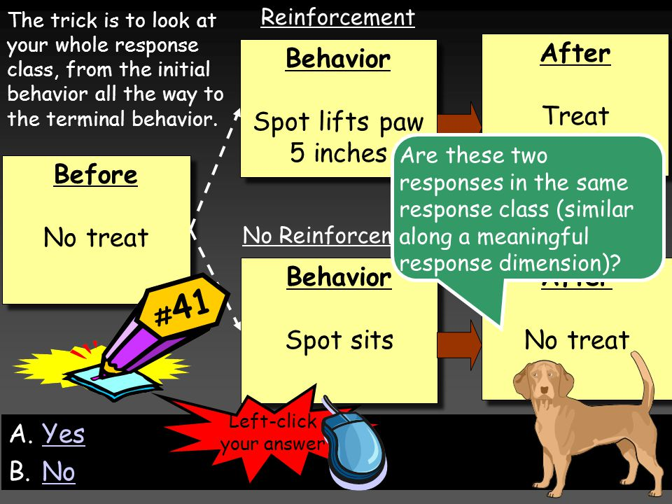 Before No treat Before No treat Behavior Spot sits Behavior Spot sits Behavior Spot lifts paw 5 inches Behavior Spot lifts paw 5 inches After Treat After Treat After No treat After No treat Reinforcement No Reinforcement The trick is to look at your whole response class, from the initial behavior all the way to the terminal behavior.