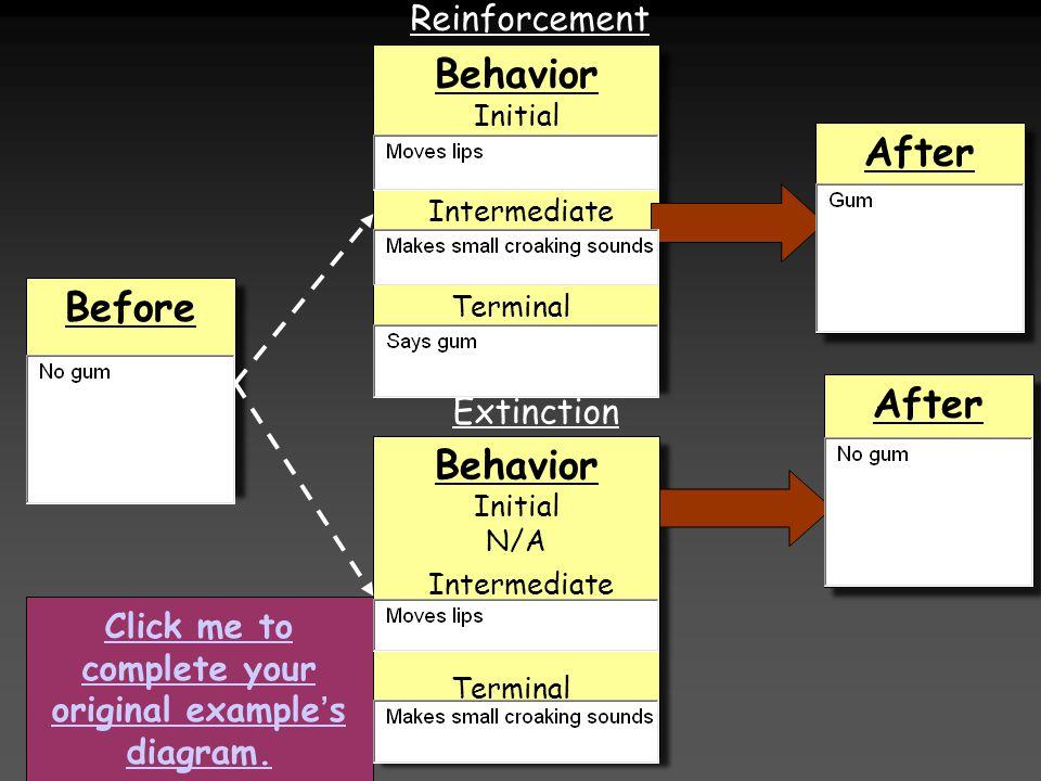 Before Behavior Initial N/A Behavior Initial N/A Behavior Initial Behavior Initial After Reinforcement Extinction Intermediate Terminal Intermediate C