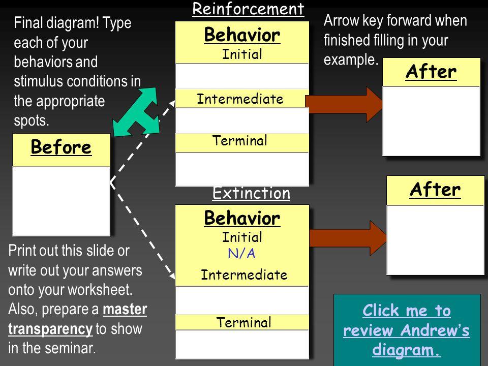 Before Behavior Initial N/A Behavior Initial N/A Behavior Initial Behavior Initial After Reinforcement Extinction Intermediate Terminal Intermediate Click me to review Andrew's diagram.