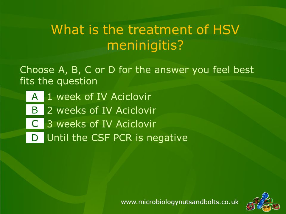 www.microbiologynutsandbolts.co.uk What is the treatment of HSV meninigitis.