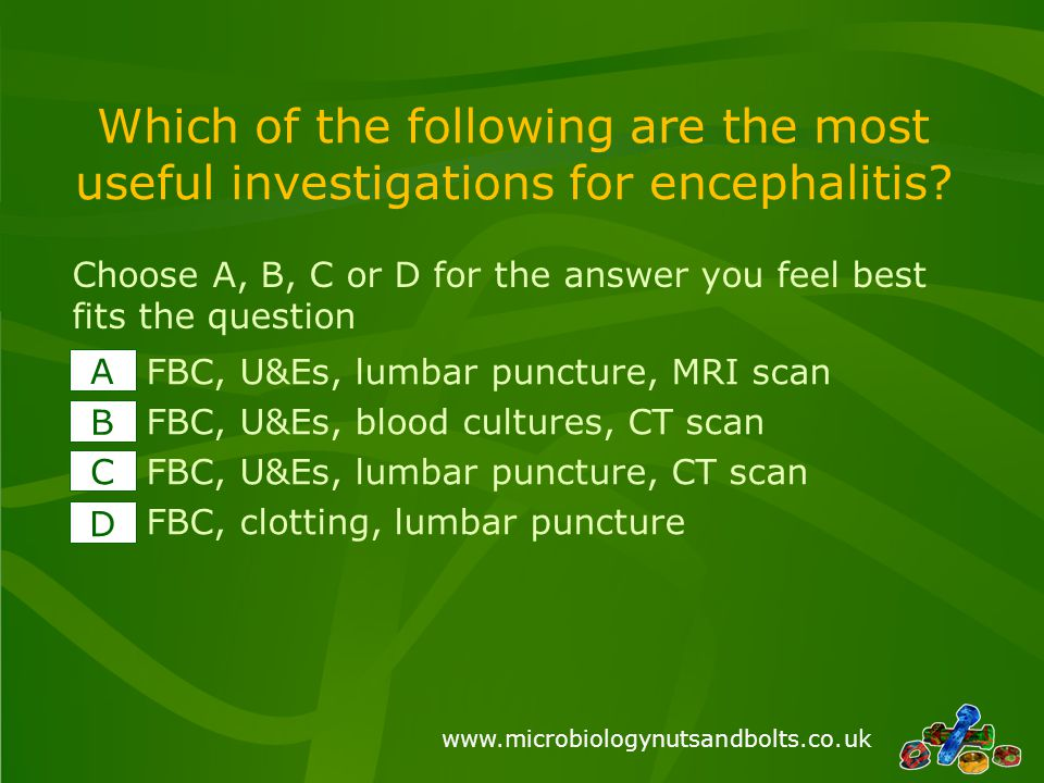 www.microbiologynutsandbolts.co.uk Which of the following are the most useful investigations for encephalitis? FBC, U&Es, lumbar puncture, MRI scan FB