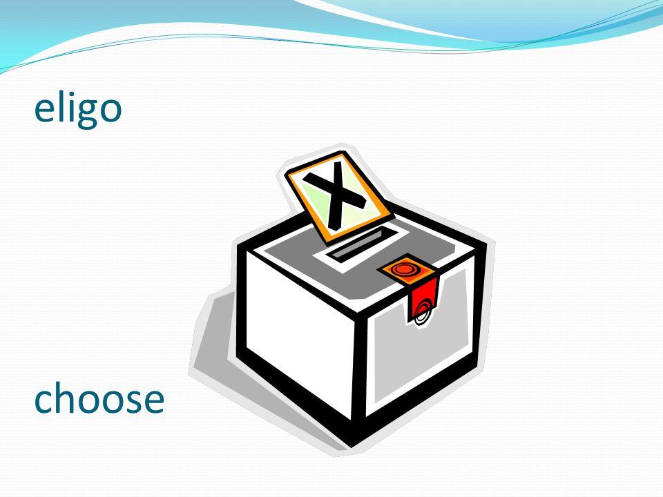 eligo choose