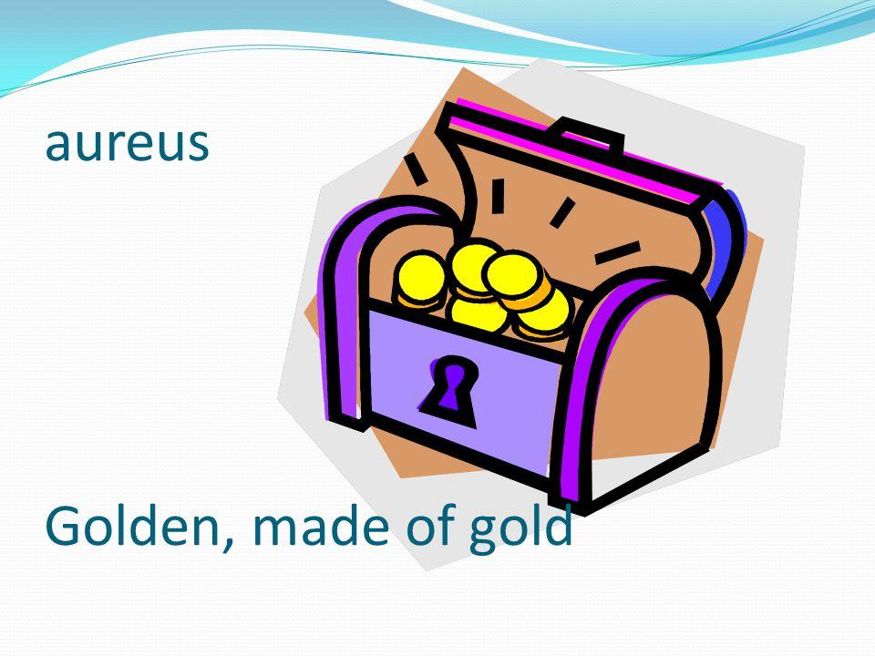 aureus Golden, made of gold