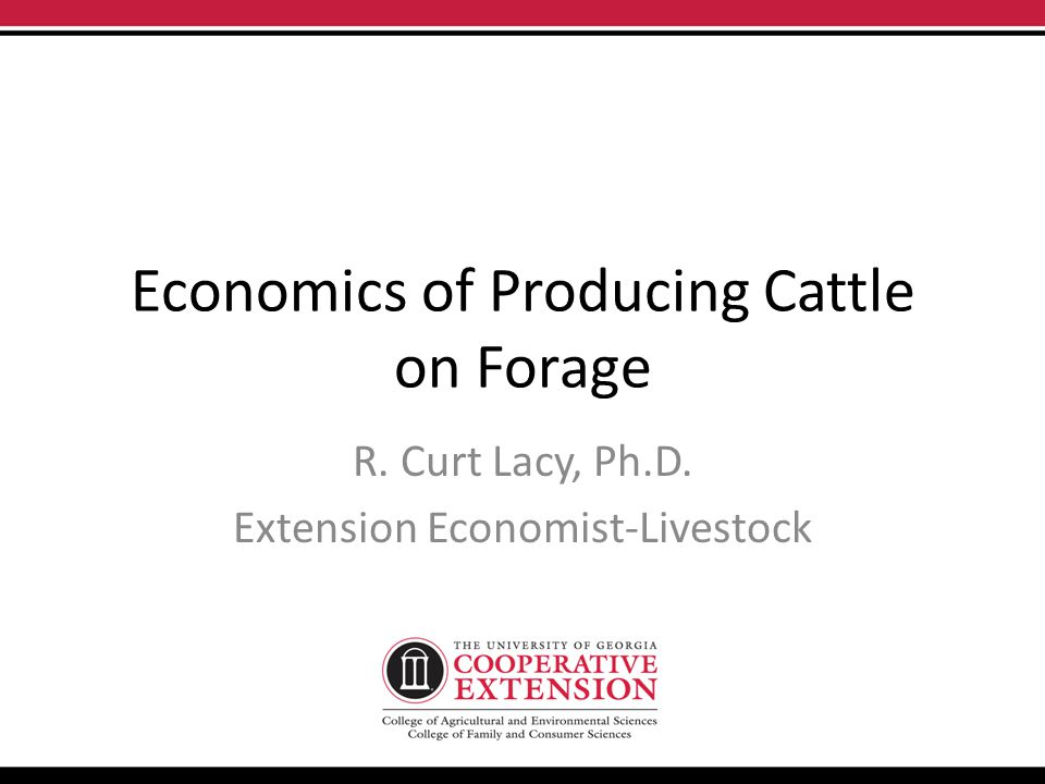 Economics of Producing Cattle on Forage R. Curt Lacy, Ph.D. Extension Economist-Livestock