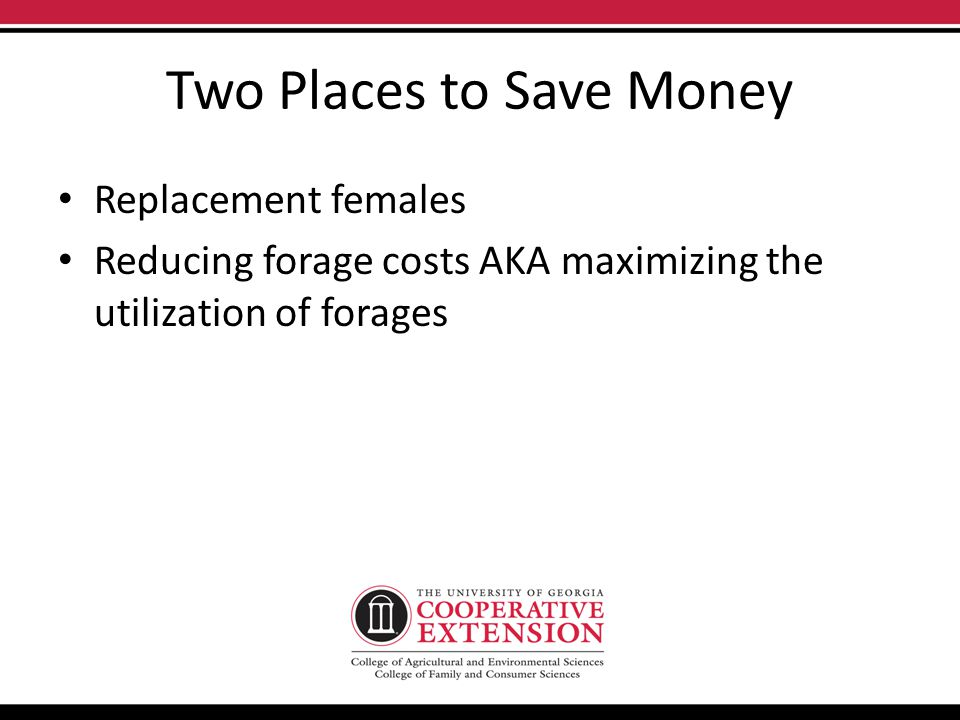 Two Places to Save Money Replacement females Reducing forage costs AKA maximizing the utilization of forages