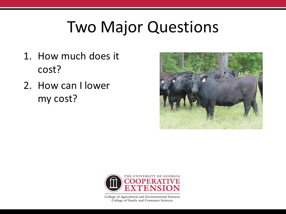 Two Major Questions 1.How much does it cost 2.How can I lower my cost