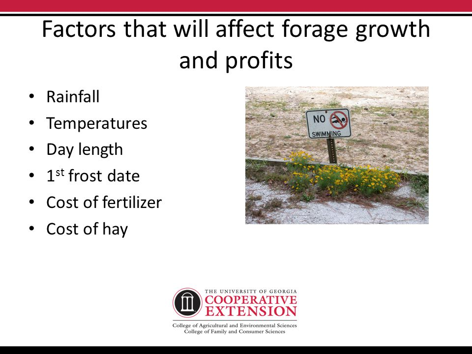 Factors that will affect forage growth and profits Rainfall Temperatures Day length 1 st frost date Cost of fertilizer Cost of hay