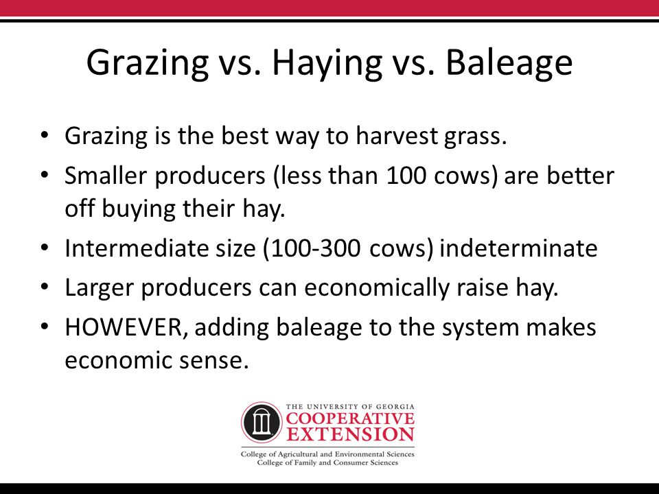 Grazing vs. Haying vs. Baleage Grazing is the best way to harvest grass.